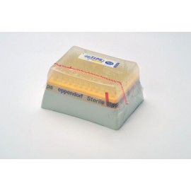 epTIPS LoRetention Dualfilter, Sample, 2-100µl, 1 box of 96 tips
